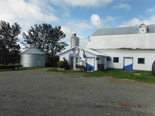 Farm for sale in Saint-Adelme, Bas-Saint-Laurent, 123, 6e Rang Est, 13742943 - Centris.ca