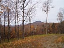 Terre à vendre à Potton, Estrie, 149, Chemin de Leadville, 21179740 - Centris.ca