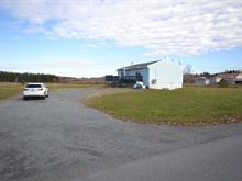 Maison à vendre à Trois-Pistoles, Bas-Saint-Laurent, 24, Route de Fatima, 22412441 - Centris.ca