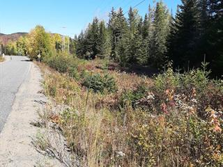 Lot for sale in Notre-Dame-de-la-Merci, Lanaudière, Montée du Cap, 10914775 - Centris.ca