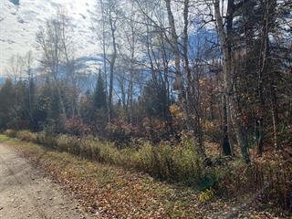 Lot for sale in Nominingue, Laurentides, Chemin des Carouges, 23986705 - Centris.ca