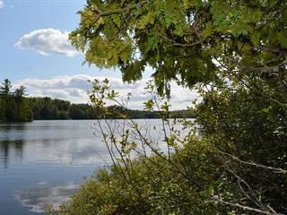 Lot for sale in Wentworth-Nord, Laurentides, Chemin  Rozon, 28922030 - Centris.ca