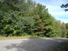 Lot for sale in Lac-Supérieur, Laurentides, Chemin des Cerisiers, 12543119 - Centris.ca