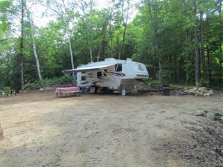Terrain à vendre à Alleyn-et-Cawood, Outaouais, 207, Chemin du Lac-de-la-Roche, 26163455 - Centris.ca
