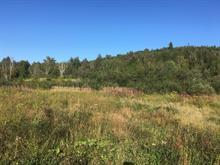 Terrain à vendre à Larouche, Saguenay/Lac-Saint-Jean, 1518, Chemin du Ruisseau, 19406829 - Centris.ca