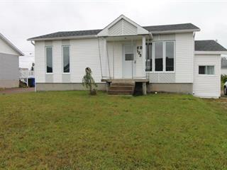House for sale in Albanel, Saguenay/Lac-Saint-Jean, 123, Rue  Théberge, 27006849 - Centris.ca