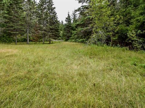 Terrain à vendre à Mont-Albert, Gaspésie/Îles-de-la-Madeleine, Rang Est Rivière Sainte-Anne, 9137313 - Centris.ca