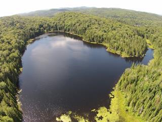 Terre à vendre à Saint-Adolphe-d'Howard, Laurentides, Chemin du Lac-Beauchamp, 15430538 - Centris.ca