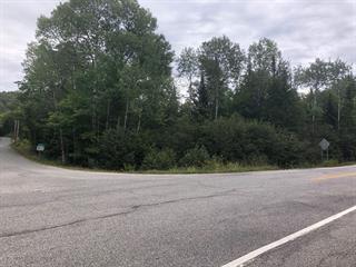 Lot for sale in Duhamel, Outaouais, Chemin du Lac-Doré Nord, 13512340 - Centris.ca