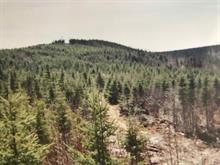 Land for sale in Saint-Philémon, Chaudière-Appalaches, Route  281, 12437073 - Centris.ca