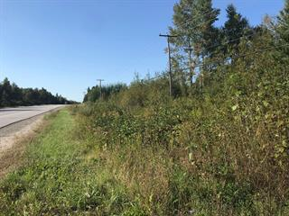 Lot for sale in Montcerf-Lytton, Outaouais, Route  117, 21894375 - Centris.ca