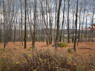 Lot for sale in La Minerve, Laurentides, Chemin  Bellevue, 12754540 - Centris.ca