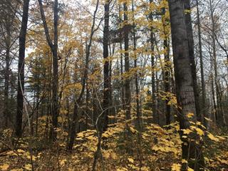 Lot for sale in Bégin, Saguenay/Lac-Saint-Jean, Chemin  Truchon, 14887761 - Centris.ca