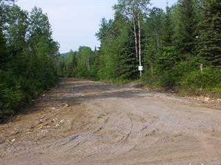 Terrain à vendre à Chertsey, Lanaudière, Route  125, 13200428 - Centris.ca