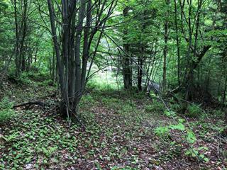Terrain à vendre à Saint-Faustin/Lac-Carré, Laurentides, Chemin des Lacs, 9690640 - Centris.ca