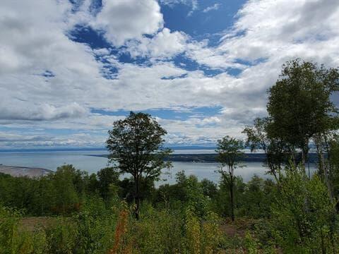 Terrain à vendre à Les Éboulements, Capitale-Nationale, Chemin du Domaine-Charlevoix, 27303876 - Centris.ca