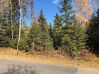 Terrain à vendre à Lantier, Laurentides, Chemin des Épigées, 20398547 - Centris.ca