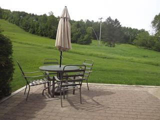 Condo / Apartment for rent in Piedmont, Laurentides, 511, Chemin du Skieur, 15973525 - Centris.ca