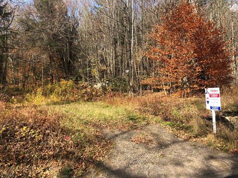 Terrain à vendre à Brownsburg-Chatham, Laurentides, Chemin  Dalesville, 15894417 - Centris.ca