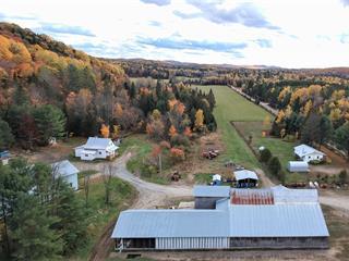 Hobby farm for sale in Saint-Émile-de-Suffolk, Outaouais, 153 - 155, Chemin du Lac-Lévesque, 26918093 - Centris.ca
