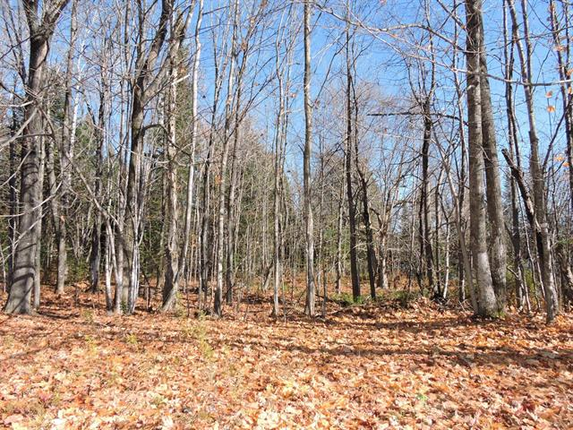 Lot for sale in Rivière-Rouge, Laurentides, Chemin du Lac-Vert, 19747329 - Centris.ca