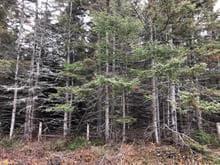 Terre à vendre à Grosses-Roches, Bas-Saint-Laurent, Route du Ruisseau-à-la-Loutre, 25450047 - Centris.ca