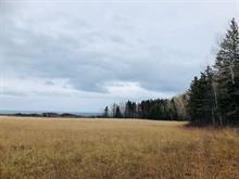 Terre à vendre à Grosses-Roches, Bas-Saint-Laurent, 02, Route du Ruisseau-à-la-Loutre, 27174444 - Centris.ca