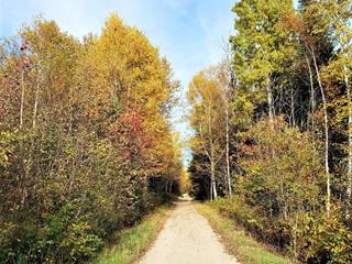 Lot for sale in Baie-Saint-Paul, Capitale-Nationale, Route  362, 13664374 - Centris.ca