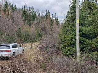 Lot for sale in Saint-Faustin/Lac-Carré, Laurentides, Route  117, 25370862 - Centris.ca