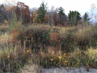 Lot for sale in Montebello, Outaouais, 319, Rue des Bois-Francs, 23579280 - Centris.ca