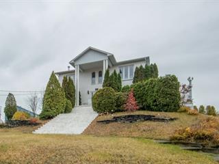 Maison à vendre à Alma, Saguenay/Lac-Saint-Jean, 664, Rue  Sacré-Coeur Est, 27232876 - Centris.ca