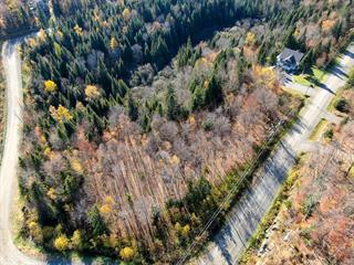 Lot for sale in Sainte-Adèle, Laurentides, Chemin du Grand-Héron, 19996900 - Centris.ca