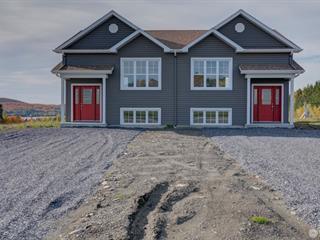 House for sale in Lambton, Estrie, 281, Rue des Lilas, 13185828 - Centris.ca