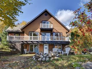 House for sale in Lac-Saguay, Laurentides, 44, Chemin du Tour-du-Lac, 19472024 - Centris.ca