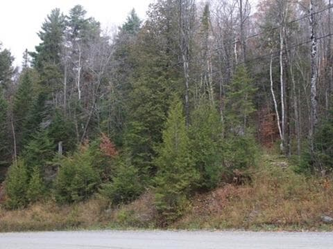 Lot for sale in Saint-Denis-de-Brompton, Estrie, 10, Rue de l'Orée-des-Bois, 17600339 - Centris.ca