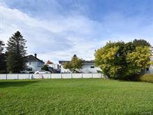 Terrain à vendre à Saint-Gabriel, Lanaudière, Rue  Michaud, 10188314 - Centris.ca