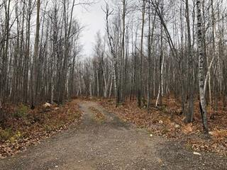 Lot for sale in La Tuque, Mauricie, 1, Chemin du Contour-du-Lac-à-Beauce, 26224727 - Centris.ca