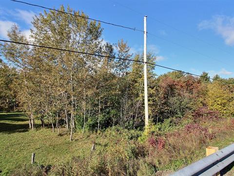 Lot for sale in Nouvelle, Gaspésie/Îles-de-la-Madeleine, Route de Miguasha Ouest, 17787901 - Centris.ca