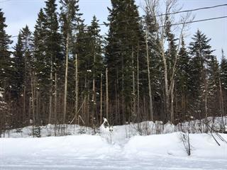 Lot for sale in Sainte-Christine-d'Auvergne, Capitale-Nationale, 6, Chemin du Loup-Cervier, 10124151 - Centris.ca