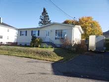 Maison à vendre à Trois-Pistoles, Bas-Saint-Laurent, 56, Rue des Razades, 17024215 - Centris.ca