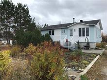 Maison à vendre à Rivière-Héva, Abitibi-Témiscamingue, 227, Route  Saint-Paul Sud, 23613173 - Centris.ca