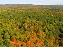 Terre à vendre à Sheenboro, Outaouais, Rue  Non Disponible-Unavailable, 24996668 - Centris.ca