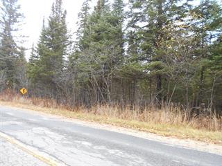 Terrain à vendre à Kiamika, Laurentides, Chemin  Chapleau, 17784764 - Centris.ca