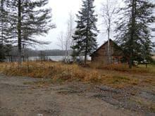 Terrain à vendre à Guérin, Abitibi-Témiscamingue, 187, Chemin du Petit-Pont, 23463044 - Centris.ca