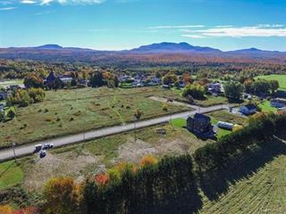 Lot for sale in Bonsecours, Estrie, Rue de l'Alizé, 18836169 - Centris.ca