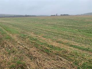 Land for sale in La Patrie, Estrie, 160Z, Route  257 Sud, 14054208 - Centris.ca