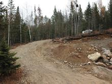 Lot for sale in Saint-Côme, Lanaudière, Rue  Plamondon, 10121093 - Centris.ca