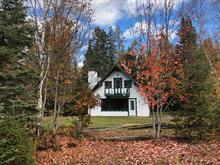 Maison à vendre à Saint-Faustin/Lac-Carré, Laurentides, 342, Rue des Aulnes, 27012698 - Centris.ca