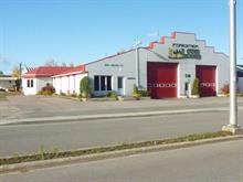 Bâtisse commerciale à vendre à Dolbeau-Mistassini, Saguenay/Lac-Saint-Jean, 248, boulevard  Saint-Michel, 24577910 - Centris.ca