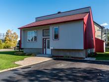 Maison à vendre à Lévis (Les Chutes-de-la-Chaudière-Ouest), Chaudière-Appalaches, 221, Rue  Drapeau, 16964554 - Centris.ca